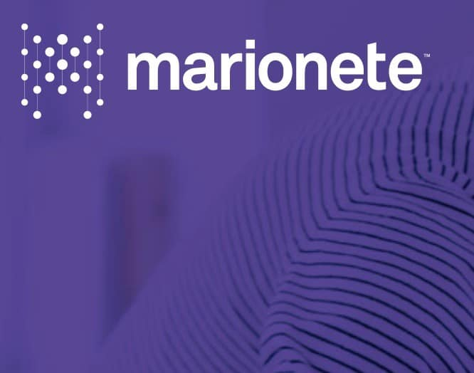 Data Science Consultancy London Marionete