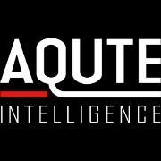Competitive Intelligence companies competitive intelligence consulting firms competitive intelligence consultancies competitive intelligence agencies - aqute logo