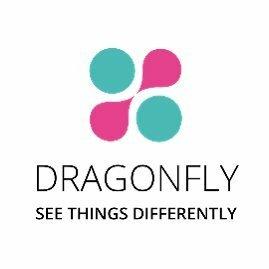 ai startups london ai startups uk dragon fly logo