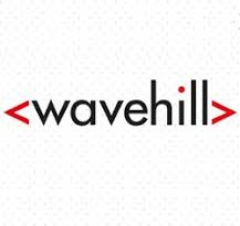 IT Helpdesk Support Companies BEST IT Help Desk Services London Company wavehill logo