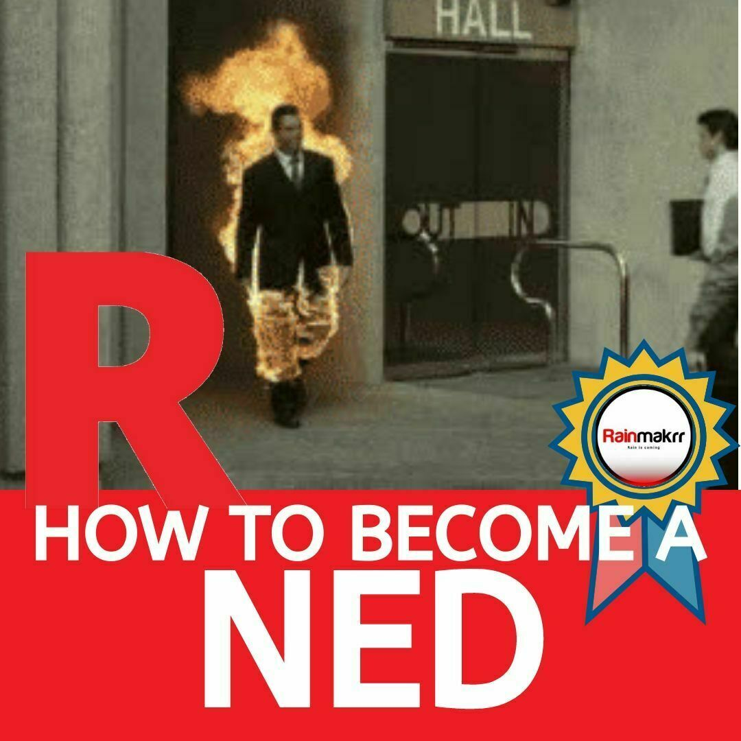 How to become a NED