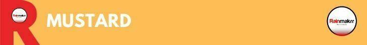 IT Consultancy London IT Consultancies BEST TECH CONSULTANCY IT Consulting Companies UK Mustard
